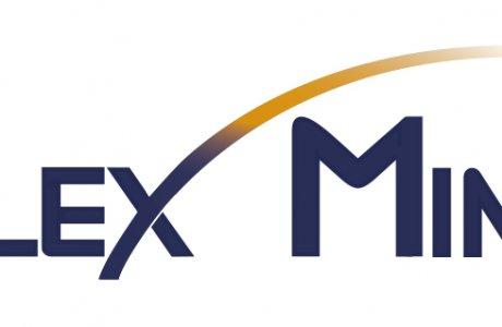 Logo Flexmind