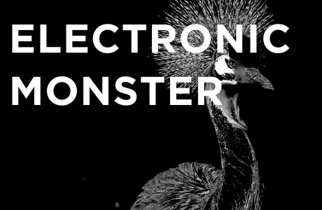 Electronic Monster